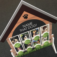 Custom printed foamex 'Name That Dog' game